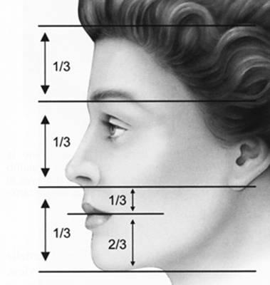 tercios faciales verticales